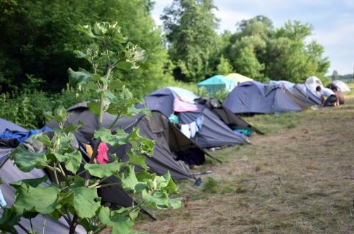 Наш табір